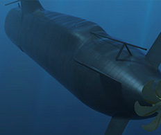 Case Study - Submarine 3D video